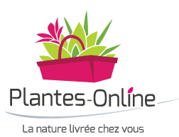 Logo Plantes Online