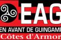 Guingamp, vainqueur du derby breton en Coupe de France