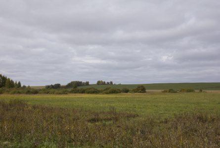 Morbihan : combien coûte un terrain à bâtir en lotissement ?